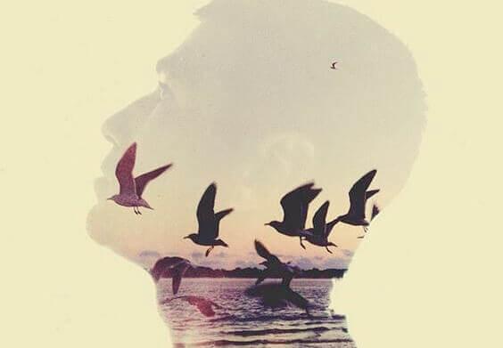 tête d'homme et oiseaux