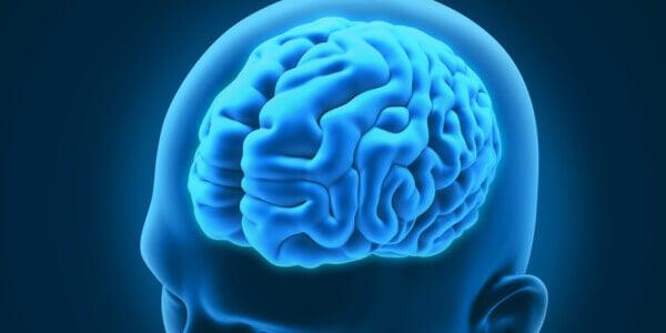 3 troubles neurologiques curieux et intéressants