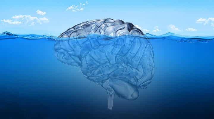 cerveau submergé