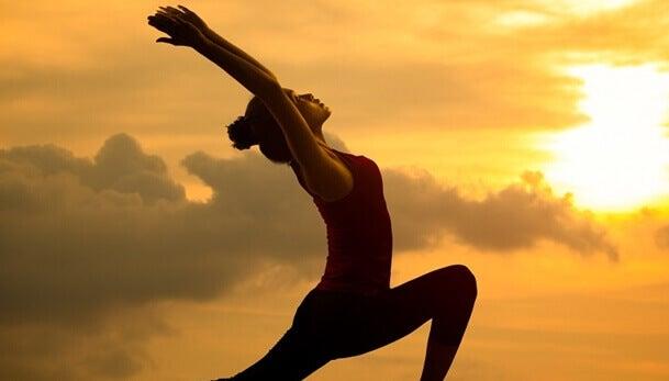 Seitai, la culture de l'harmonie et de la santé