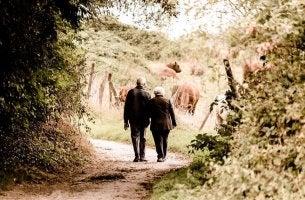 grand parents marchant bras dessus bras dessous sur un chemin