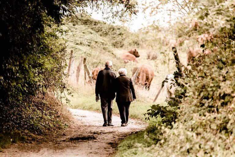 Les histoires de nos grands-parents : la mémoire collective