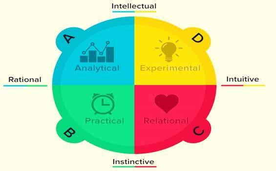 Dominance cérébrale selon la théorie de Herrmann: quelle est la vôtre?
