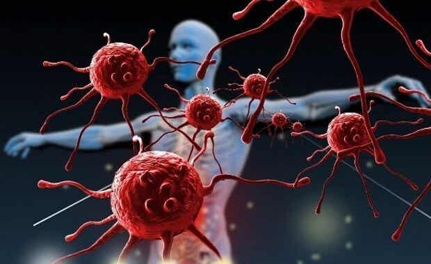 Comment pouvez-vous renforcer votre système immunitaire ?