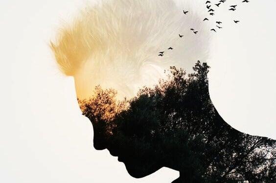 profil d'un homme et paysage