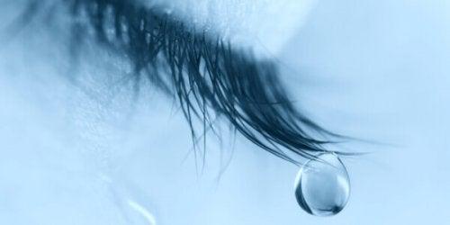 oeil avec larme