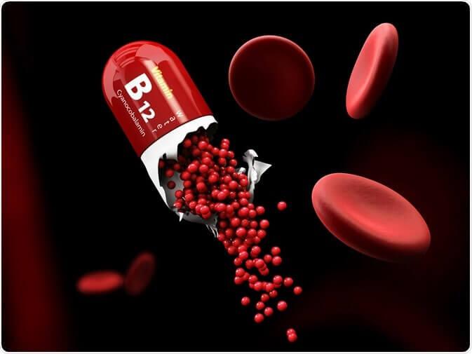 Le manque de vitamine B12, et l'impact que cela peut avoir sur notre cerveau