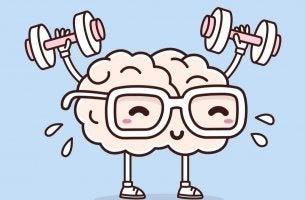 Cerveau qui fait du sport