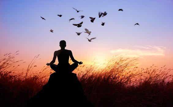 Les 8 chemins à suivre pour en finir avec la souffrance selon le bouddhisme