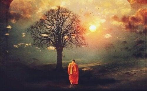 bouddhiste devant un arbre