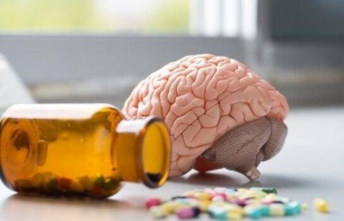 cerveau et vitamine D