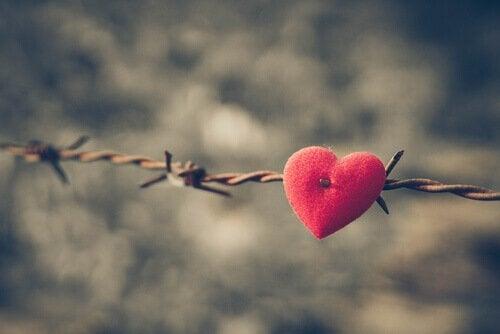 coeur sur du fil barbelé