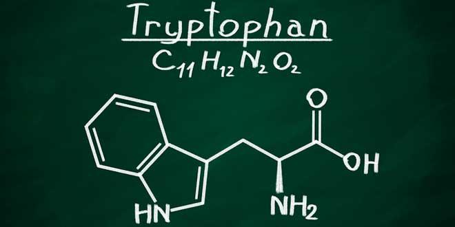 formule chimique du tryptophane
