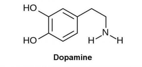 la consommation de drogues provoque la sécrétion de dopamine