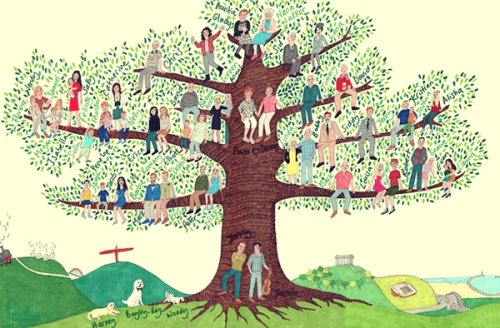 Que pouvez-vous apprendre de votre arbre généalogique ?