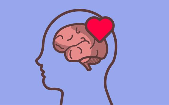 cerveau avec coeur