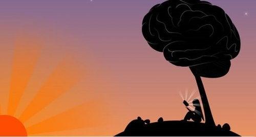 arbre en forme de cerveau : intelligence et sagesse