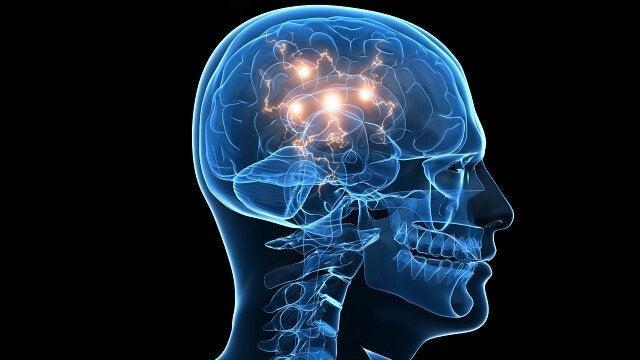 effet des comportements à risque dans le cerveau