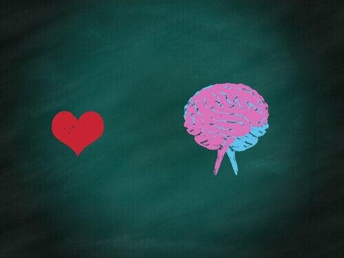 coeur et cerveau : équilibre humain