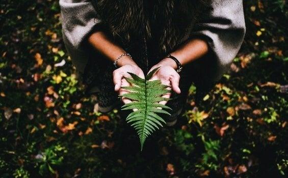 Le sens de la vie s'écrit avec calme et patience