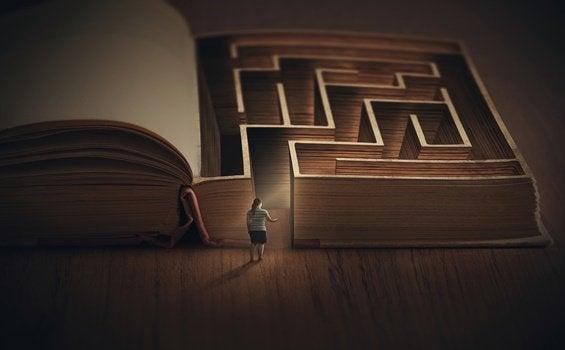 livre labyrinthe