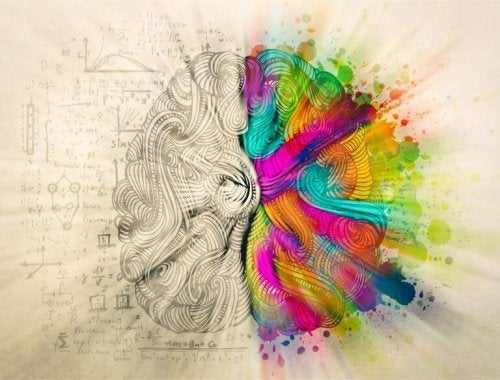 hémisphères de cerveau et l'équilibre humain
