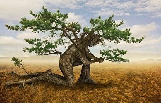 arbre humain