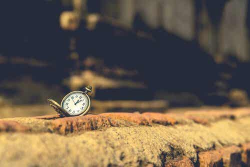 10 phrases extraordinaires d'Orhan Pamuk