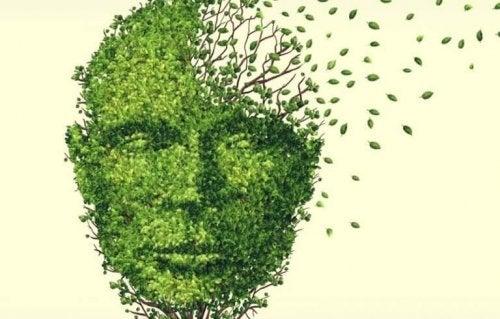 visage en feuilles
