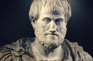 Le complexe d'Aristote