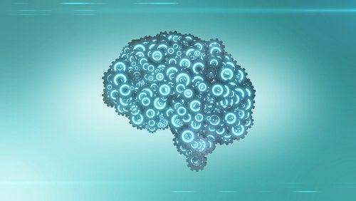 quel est le meilleur type d'exercice pour notre cerveau ?