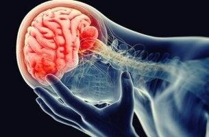 La théorie inflammatoire de la dépression