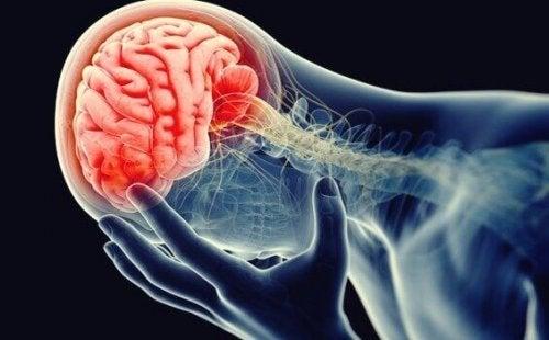 La neuroinflammation, ou la théorie inflammatoire de la dépression