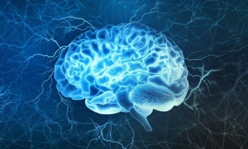 étude du tsunami cérébral