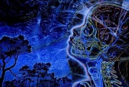 les différentes glandes associées au cerveau