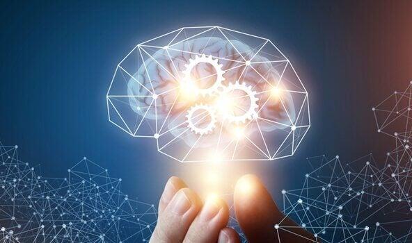La théorie de l'intelligence machiavélique