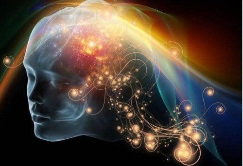 letryptophane et la sérotonine pour optimiser votre bien-être