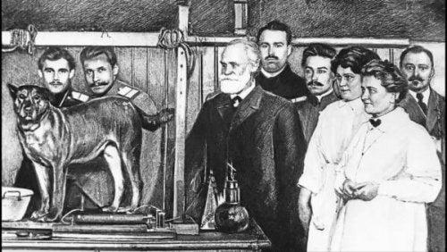 pavlov et le conditionnement