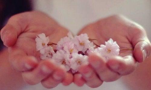 L'abondance est une réalité à laquelle vous vous connectez depuis l'intérieur
