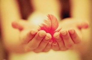 mains avec une plume