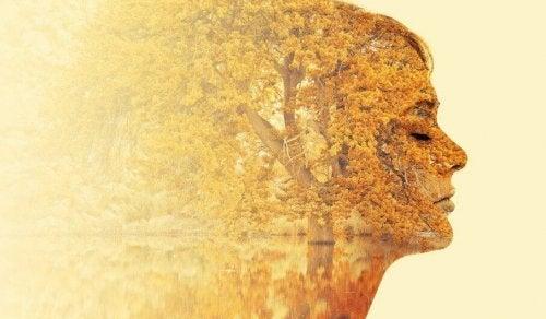 5 conseils pour mener une introspection libératrice