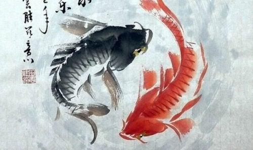 poisson yin et yang