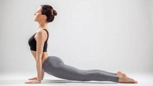 postures de yoga : posture du chien