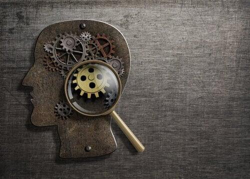 métacognition et fonctionnent de l'esprit