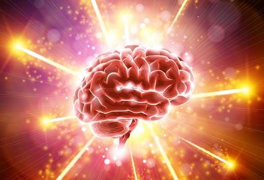 pourquoi le cerveau vieillit ?