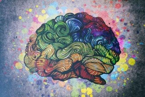 cerveau et lien entre créativité et trouble bipolaire