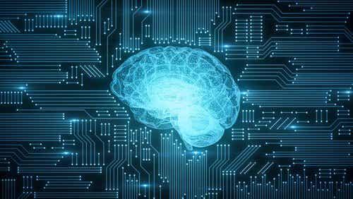 Le connexionnisme, un modèle de fonctionnement neuronal