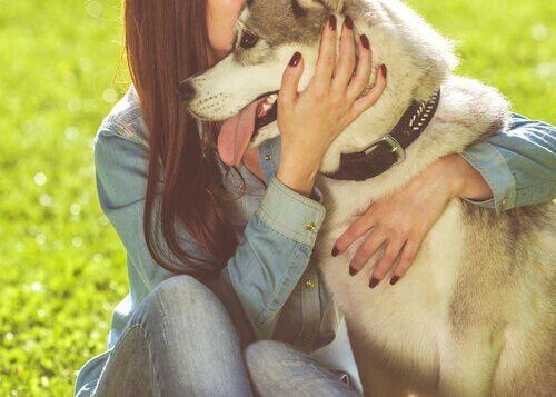 6 bénéfices qu'il y a à avoir un animal de compagnie
