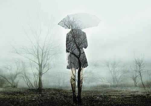 Mythes sur le deuil : les pièges habituels dans la gestion de la perte