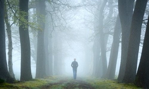 Le test de la forêt, un test de psychanalyse relationnelle